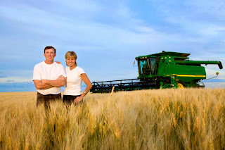 How to Starting Wheat Farming Business