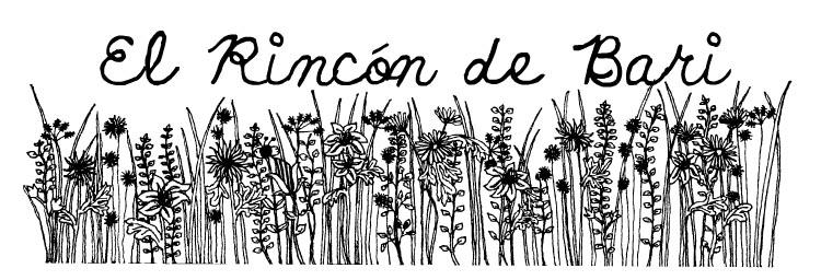 El Rincón de Barí