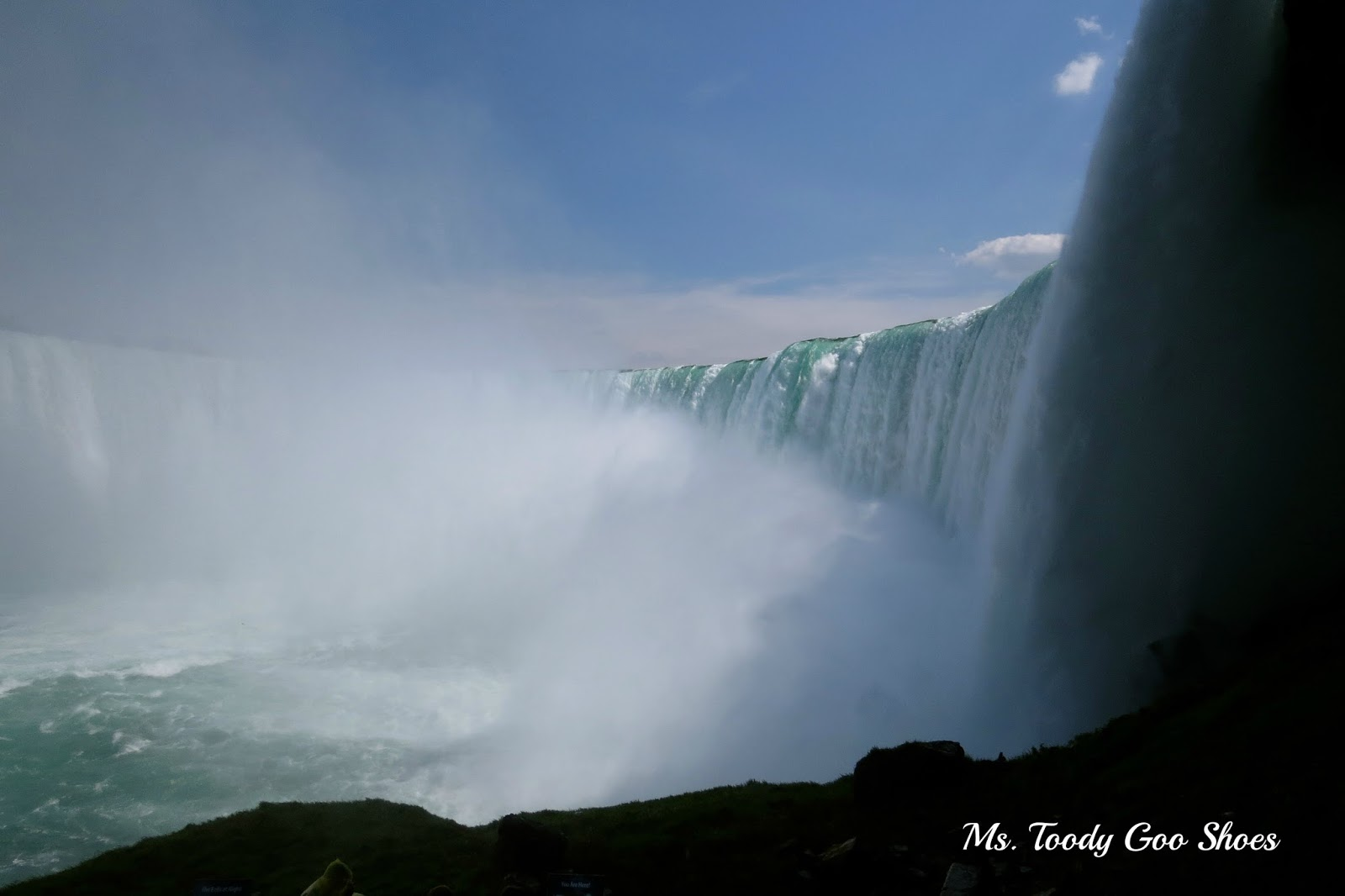Niagara Falls - A Road Trip    by Ms. Toody Goo Shoes