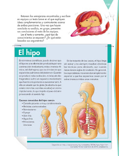 Apoyo Primaria Español 6to Grado Bloque IV Lección 10 Producir un texto que contraste información sobre un tema