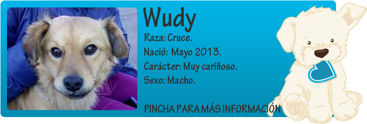 http://mirada-animal-toledo.blogspot.com.es/2014/01/wudy-perrito-de-10kl-en-adopcion.html