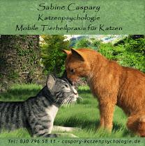 Sabine Caspary - Katzenpsychologie - Mobile Tierheilpraxis für Katzen - Tierpsychologie