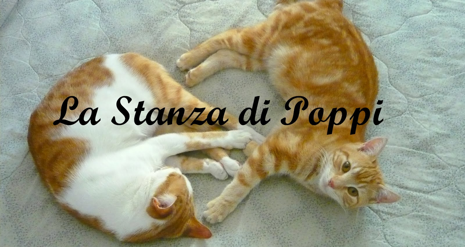 La Stanza di Poppi