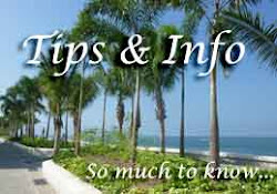 Tips & Info while Vacationing in Puerto Vallarta