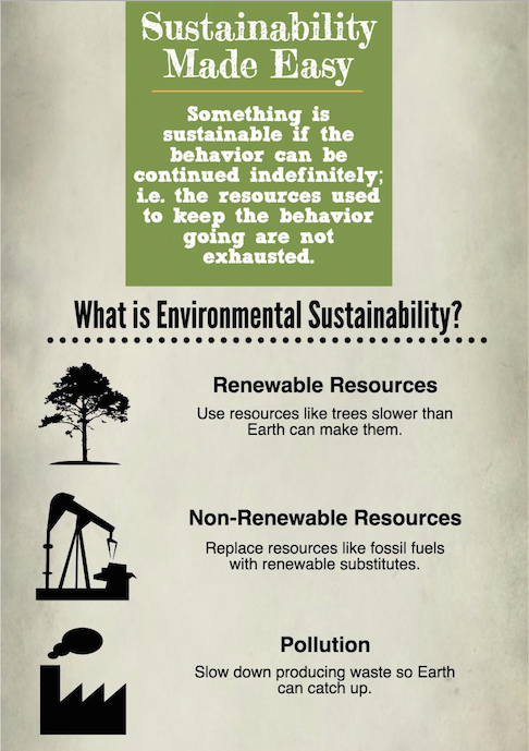 What Is Sustainability Infographic