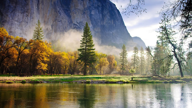 Nature Morning Scenery Forest Mountains Lake Mist HD Wallpaper
