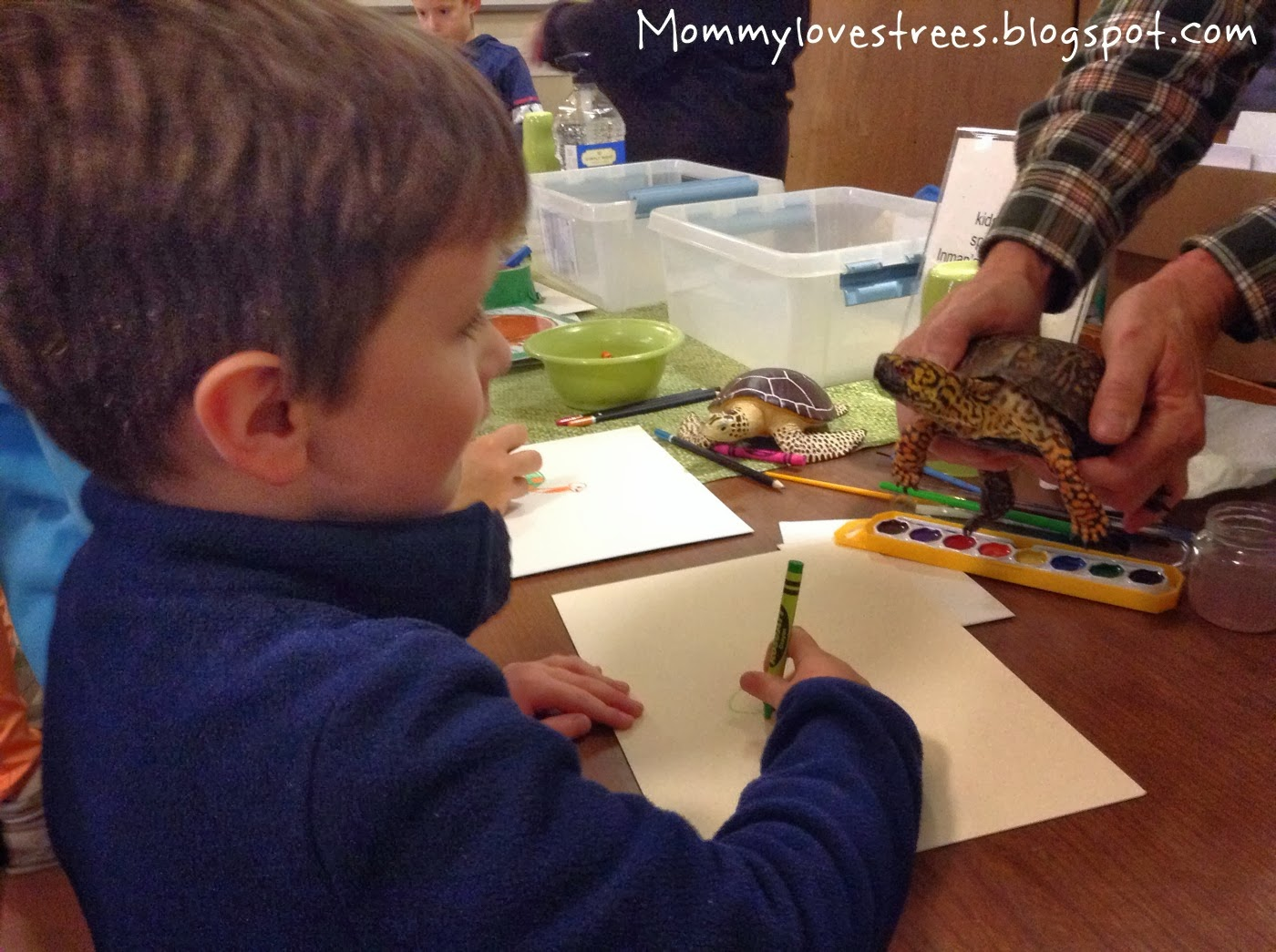 Benefits of combining art & nature|Mommy Loves Trees