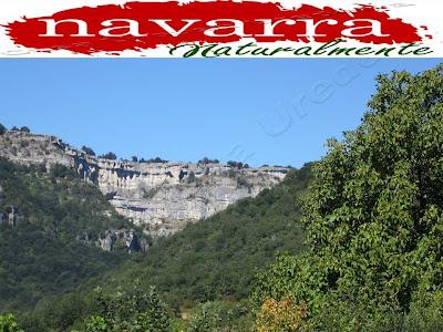 """Balcón Ubaba Pilatos  lugar donde Surge el  Nacedero el Urederra  en Baquedano -  En el verano hay alguna fecha concreta, el Día de la Virgen de Agosto, el 15 de Agosto, que coincidiendo por la afluencia de turistas y  por la costumbre de los lugareños, tanto de la  """"Comarca Turística de Urbasa Estella"""" como de otras zonas de """"Navarra Naturalmente"""".  Ese mismo día  confluyen a las mismas horas, produciendo  atascos e incomodidades para poder acceder  al realizar  """"La Ruta de las Cascadas Azules de Baquedano"""" colapsando los diferentes aparcamientos habilitados y originando  incomodidades a cuantas personas van a visitar el """"Nacedero del Urederra"""".  Nuestro consejo es, si se puede, evitar realizar  esta Ruta Naturalística de """"La Ruta de las Cascadas Azules de Baquedano"""" en la fecha del 15 de Agosto.  Si vamos a ir en verano,  es conveniente realizar la ruta a primeras hora de la mañana, de esta manera evitaremos las incomodidades, tanto del calor como de las incomodidades, de encontrarnos  con muchas personas que como nosotros, van a realizar la excursión  La Ruta de las Cascadas de Baquedano""""  Es mejor si nos es posible ir pronto para poder evitar todos estos inconvenientes."""