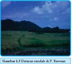 Dataran Rendah di Pulau Bawean