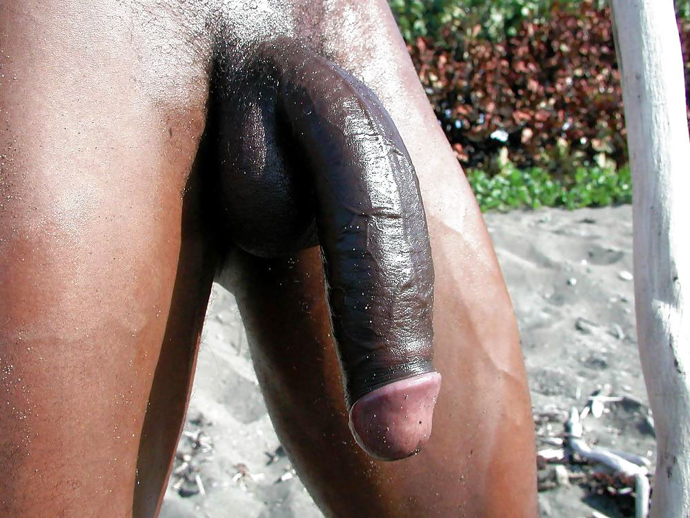 from Jermaine black cock gay free