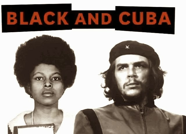 the african american dom struggle and the n revolution  assata shakur and numerous other black puerto rican dom fighters have found a safe haven in as one soon to be published essay states