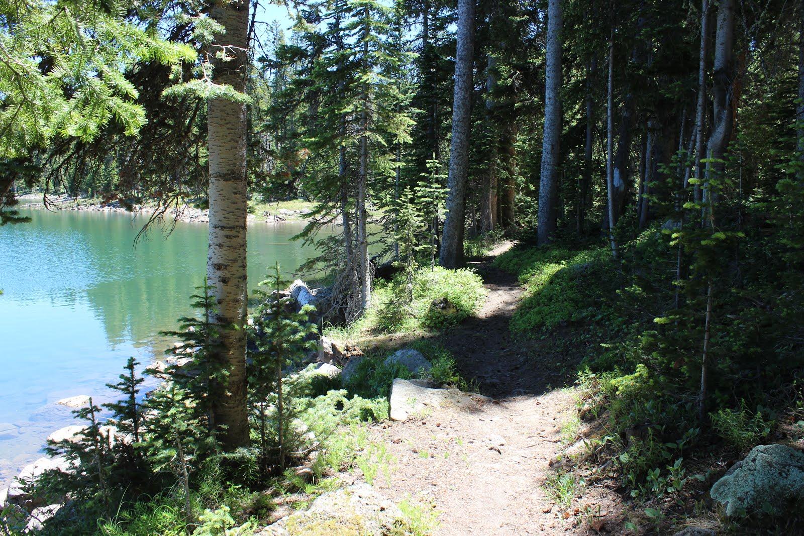 ward lake bradenton fishing spots