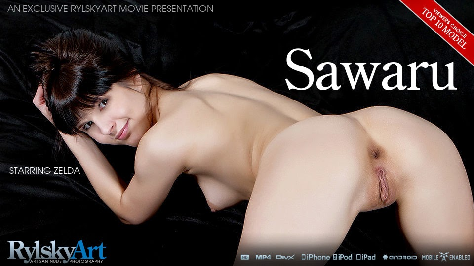 BqnolskyArk 2014-06-17 Zelda - Sawaru (HD Video) 07010