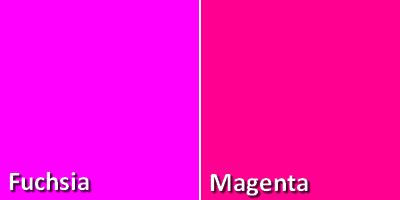 Quelle est la diff rence entre le fuchsia et le magenta - Couleur rose fushia ...