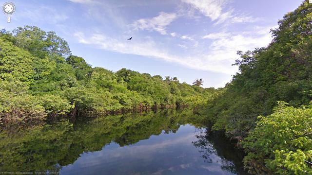 rio amazonas - amazonas