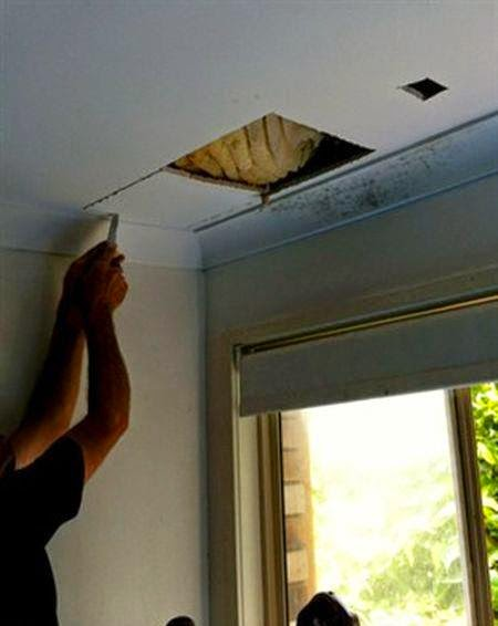 صُدم زوجين عندما أرادا التحقق من سائل بني يتسرب من خلال سقف المنزل