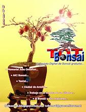 DR 17 TOT Bonsai