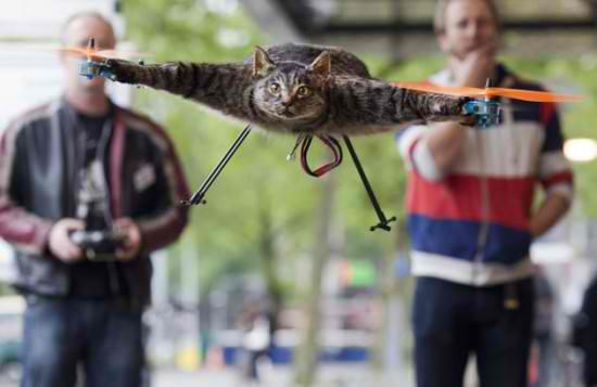 DUTCH ARTIST TURNS DEAD CAT INTO REMOTE-CONTROLLED HELICOPTER
