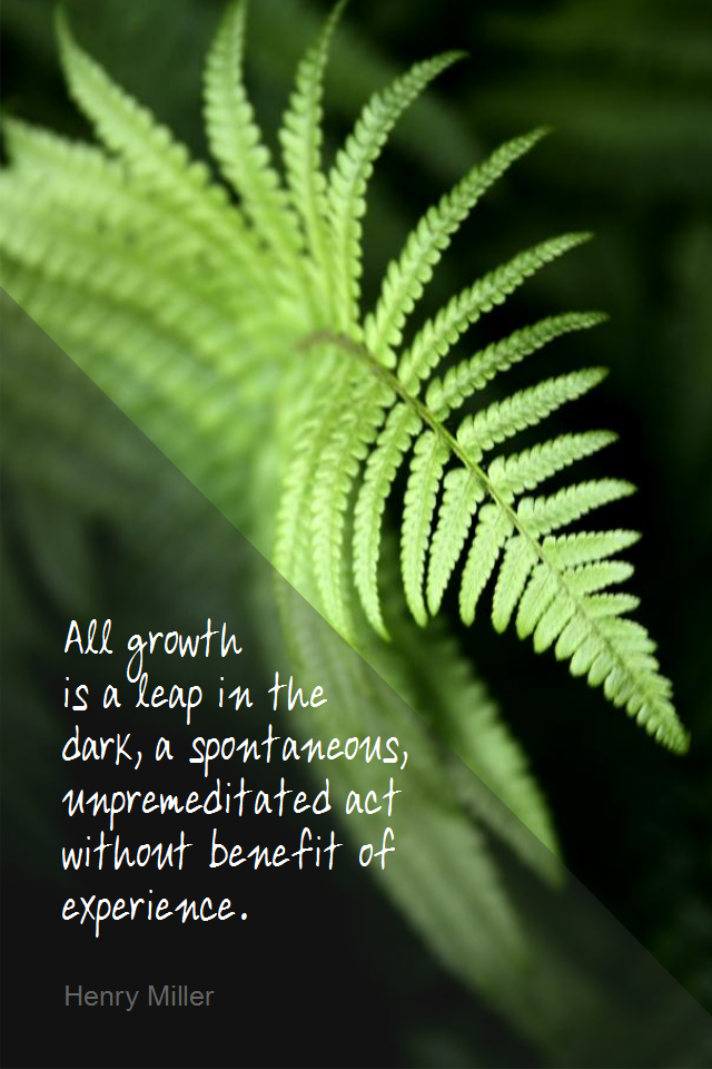 visual quote - image quotation for GROWTH - All growth is a leap in the dark, a spontaneous, unpremeditated act without benefit of experience. - Henry Miller