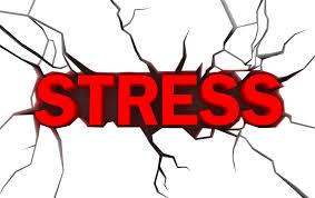 Stress nhiệt luôn được quan tâm  trong chăn nuôi gà công nghiệp.