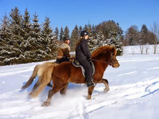 Reiten im Winter,