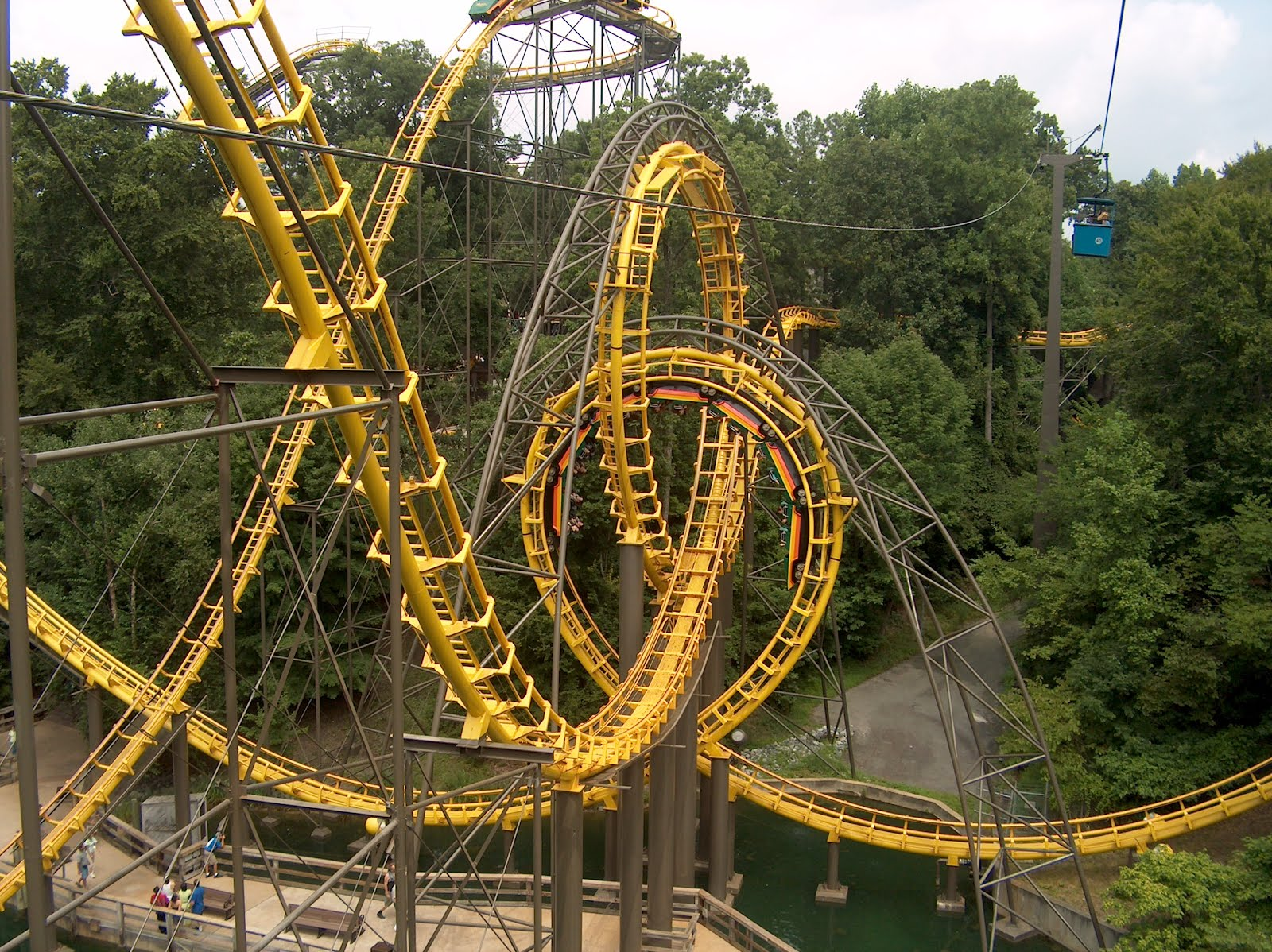 Old Fashioned Busch Gardens Roller Coaster Illustration - Brown ...