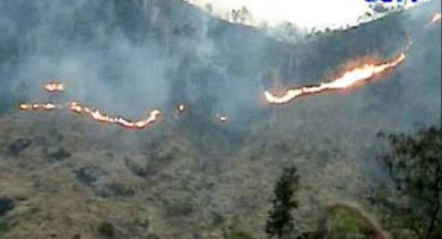 Kebakaran hutan lereng gunung lawu