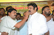 Balakrishna Birthday Celebrations-thumbnail-16