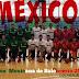 Los 12 jugadores de la selección mexicana sub-16 2014.