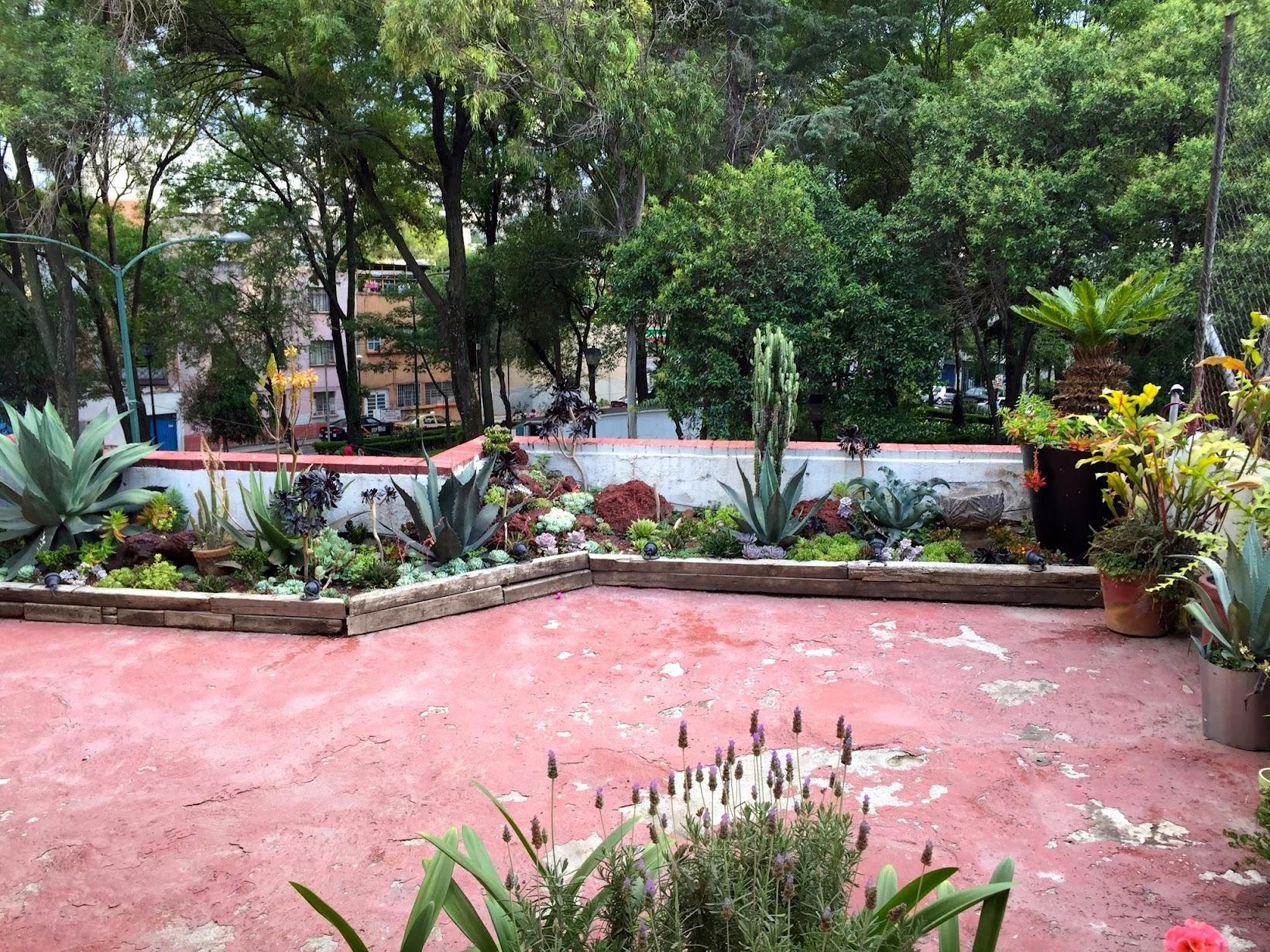 double skinny macchiato two weeks in mexico