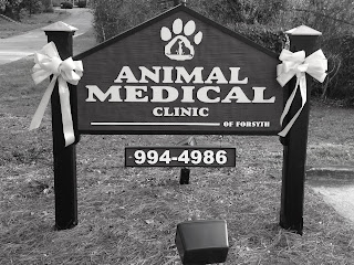Our Veterinary Practice