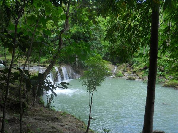 swim cambugahay