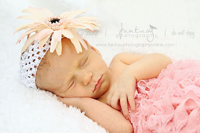 Triad Newborn Photography in Winston Salem - Fantasy Photography, LLC