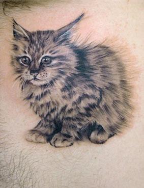 Imagens de Tatuagens de Gatos
