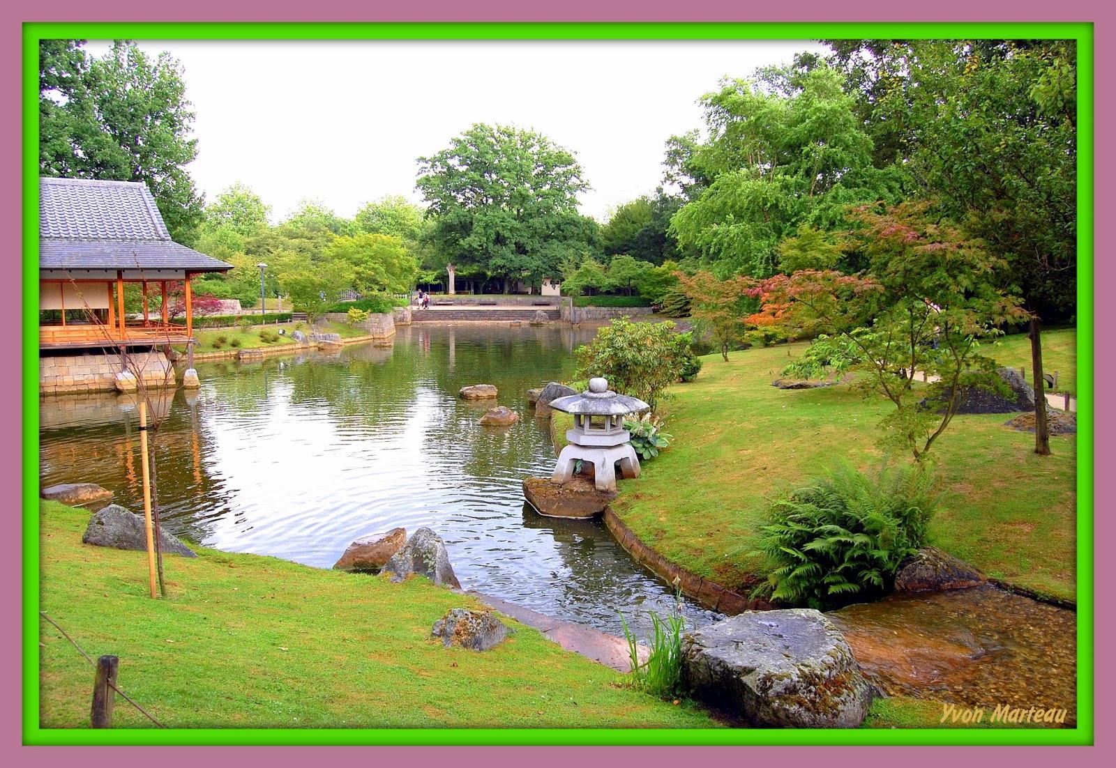 Yvon photographie jardin japonais de hasselt for Jardin japonais hasselt 2016