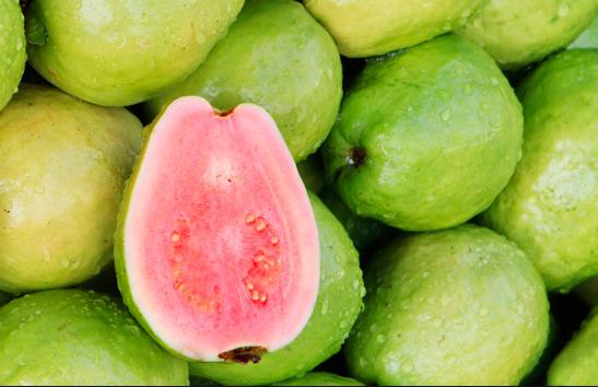 अमरुद फल के फायदे और उपयोगिताएं
