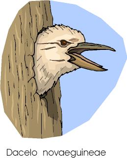 Laughing Kookaburra | Dacelo Novaeguineae Free Clipart
