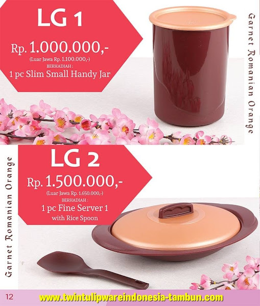 Level Gift 1 & 2 Twin Tulipware Februari 2016