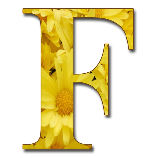 GRANNY ENCHANTED'S BLOG: Free Yellow Floral Alphabet