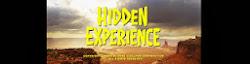 Hidden Experience