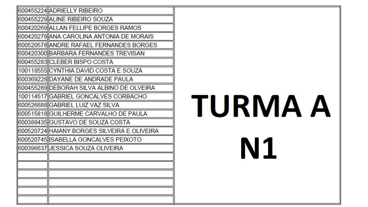 TURMA A N1