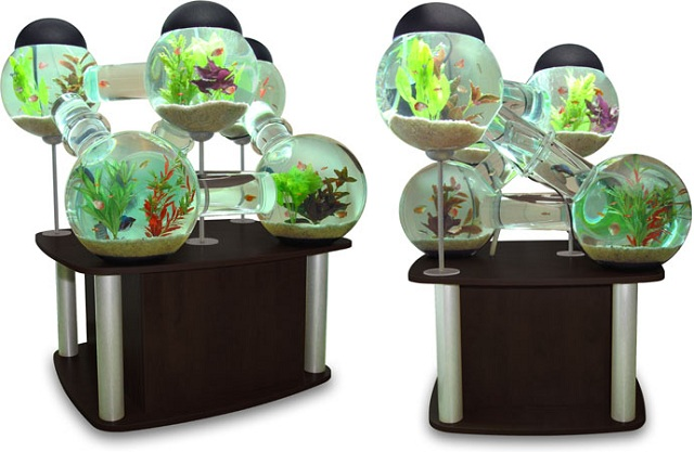 Silverfish Aquarium by Octopus Studios   Interesting Creative Designs