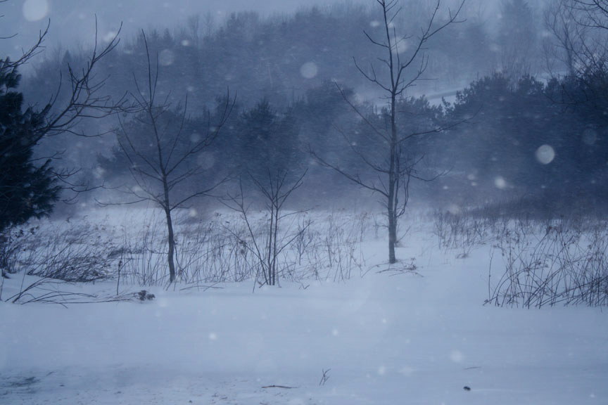 snowin