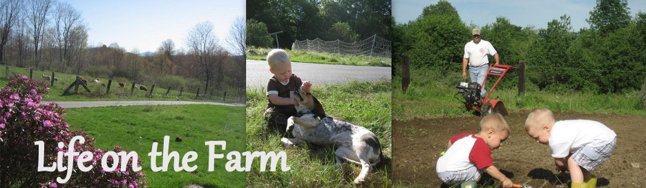 Life on the farm...