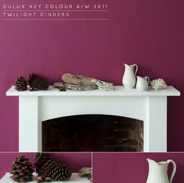 Twilight Cinders: Dulux Key Colour A/W 2011 - Bright ...