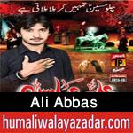 http://www.humaliwalayazadar.com/2015/10/ali-abbas-nohay-2016.html