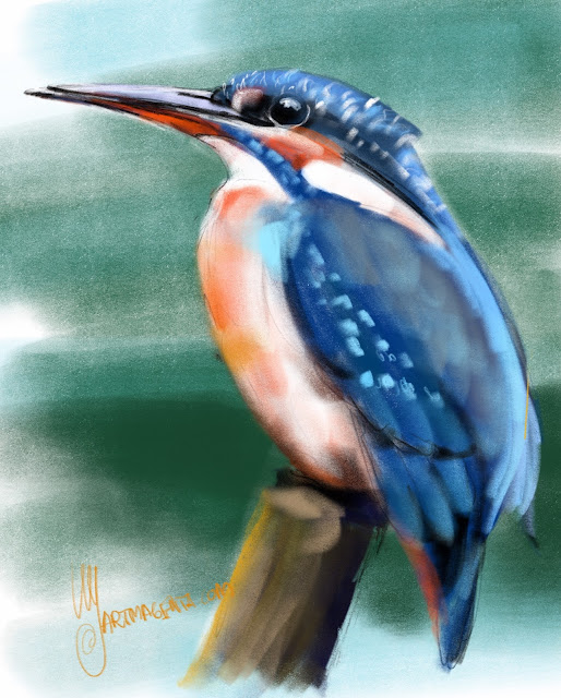 Kingfisher bird painting by Artmagenta