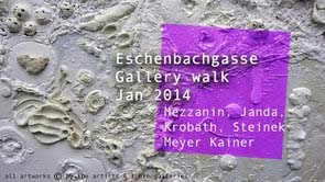 Gallery walk Eschenbachgasse Jan 2014