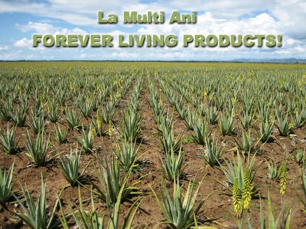 Forever Living Products la 36 de ani