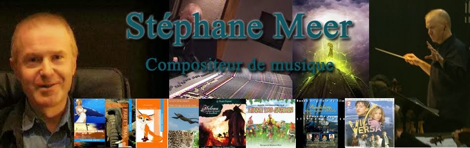 STEPHANE MEER